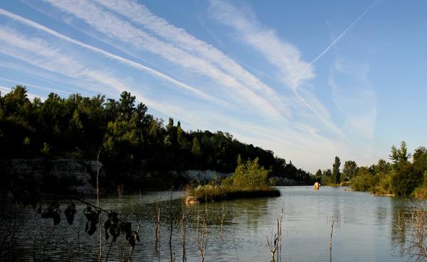 Parc de l'Ermitage à Lormont (détail) © Pascal Fellonneau