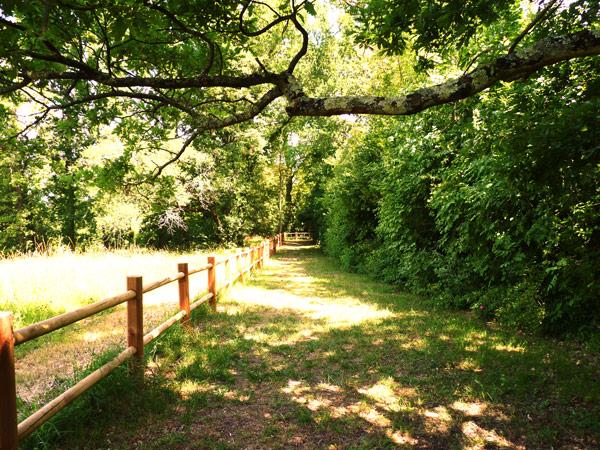 Parc des coteaux - le domaine de Séguinaud