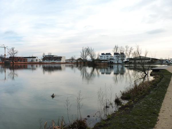 les étangs, vue d'ensemble