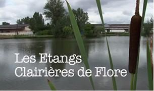 Les Etangs Clairières de Flore